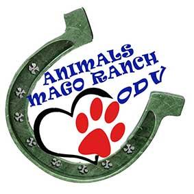 logo-AnimalsMR-10CM
